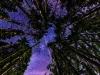 Milchstrasse fotografieren beim Camping im Schwarzwald